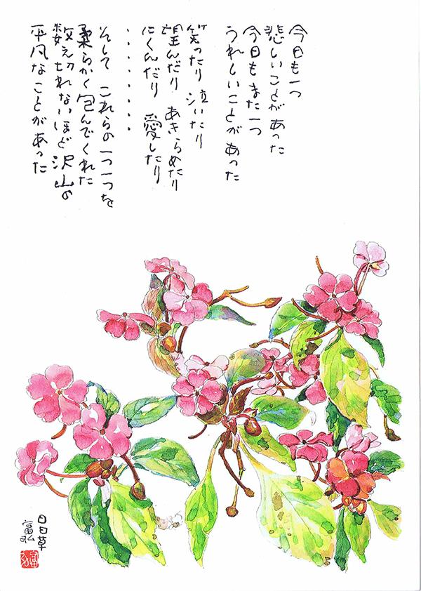 星野富弘の画像 p1_23